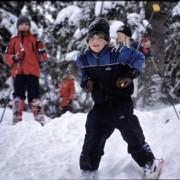 flokken_vinkelhytta_mars_2005