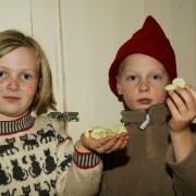 flokkens_juleavslutning_2009
