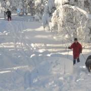patruljetur_for_elg_og_hjort_februar_2010