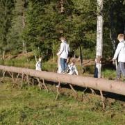 flokk_utemoeter_september_2012
