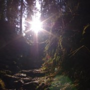 vandrertur_til_groenlia_2012