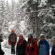 vandrertur_til_gjerdingen_skole_2015